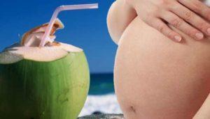 air kelapa untuk ibu hamil